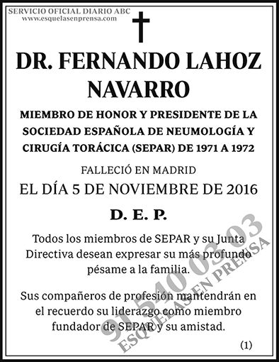Fernando Lahoz Navarro